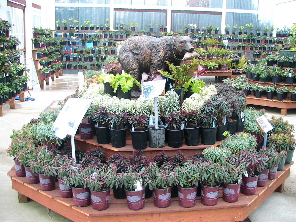 Attractive Bark And Garden Center